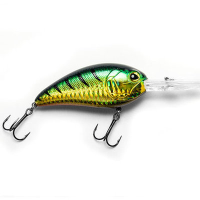 E-Sox Drongo Green Perch